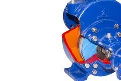 Nahes hohes Querschnittdetail innerhalb der Kreiselpumpe für industrielles lokalisiert auf weißem Hintergrund mit Beschneidungspf lizenzfreies stockbild