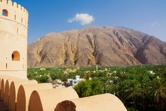 Nahkalfort en oase van dadelpalmen onder de berg Oman stock foto's