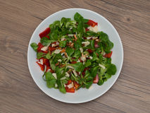 Nahrhafter frischer Salat Lizenzfreie Stockfotos