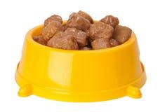 Nahrung des Hundes Lizenzfreies Stockbild
