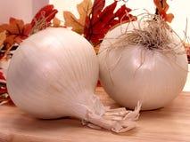 Nahrung: Weiße Zwiebeln Lizenzfreie Stockfotografie