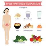Nahrungsmittel, die grafisches Lebensmittel der vaginalen Gesundheitsinformation verbessern, ico Stockfotografie