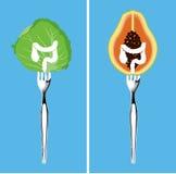 Nahrungsmittel für die Reinigung Ihres Doppelpunktes Stockbilder