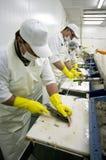 Nahrungsmittelaufbereiten Lizenzfreie Stockfotografie
