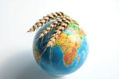 Nahrungsmittelglobale Krise Stockbilder