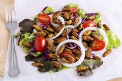Nahrungsmittelinsekten: Gebratenes Wurminsekt oder Puppenseidenraupe für das Essen als Nahrungsmittel im Salatgemüse auf hölzerne stockfotografie