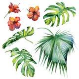 Nahtlose Aquarellillustration von tropischen Blättern Stockbilder