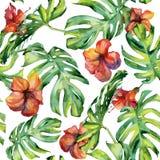 Nahtlose Aquarellillustration von tropischen Blättern Stockbild