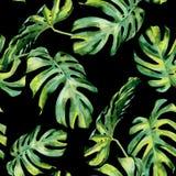 Nahtlose Aquarellillustration von tropischen Blättern, dichter Dschungel Lizenzfreies Stockfoto
