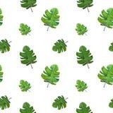 Nahtlose Art des Hintergrundes von tropischen Blättern des Aquarellgrüns lizenzfreie abbildung