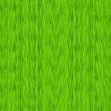 Nahtlose Beschaffenheit des grünen Grases Hintergrund des grünen Grases Tileable-Vorfrühlings Lizenzfreie Stockfotografie
