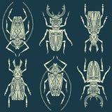 Nahtlose Beschaffenheit oder Hintergrund w des linearen Musters der Insekten vektor abbildung