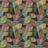Nahtlose Beschaffenheit von den bunten Blättern gemalt im Aquarell lizenzfreie abbildung