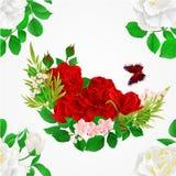 Nahtlose Beschaffenheit weiße und rote Rosen und Hintergrundvektorillustration der Schmetterlingsweinlese festliche editable Stockfotos