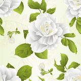 Nahtlose Beschaffenheitsstammblumen-Weißrose und natürlicher Hintergrund der Blattweinlese vector die editable Illustration lizenzfreie abbildung