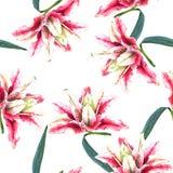 Nahtlose Blumenmusterlilien Lizenzfreie Stockfotografie