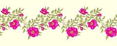 Nahtlose Blumenränder Stockbilder