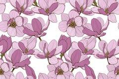 Nahtlose Farbe der Magnolie stockfoto