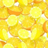 Nahtlose Fliese der Zitrusfrucht Stockfotos