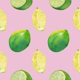 Nahtlose Fliese mit Zitrone und Kalk auf Rosa lizenzfreies stockfoto
