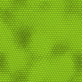 Nahtlose grüne Leguan-Haut Stockfotos