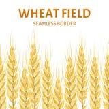 Nahtlose Grenze des Weizens Vektorillustration in der flachen Art lizenzfreie abbildung