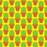 Nahtlose Kaktuspflanzen für das Haus Stockfotos