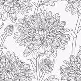 Nahtlose mit Blumenhand gezeichneter Vektor Stockbild