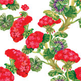 Nahtlose mit Blumentapete in der Aquarellart Stockfoto