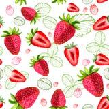 Nahtlose Muster des Erdbeervektors Lizenzfreie Stockfotos