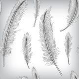 Nahtlose Muster-Feder-Hand gezeichneter Hintergrund Stockfotografie