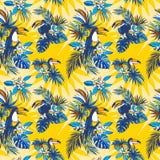 Nahtlose Muster Hand gezeichnete tropische monstera Palmblätter, Blumen, Vögel Stockbild