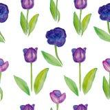Nahtlose Muster mit Blumentulpen (violette Blumen mit grünen Blättern) Lizenzfreie Stockbilder