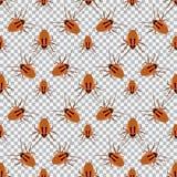Nahtlose Musterschabe auf einem karierten Hintergrund Schabe, Käfer Lizenzfreie Stockbilder