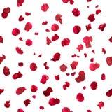 Nahtlose rosafarbene Blumenblätter Lizenzfreie Stockfotos
