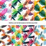 Nahtlose tropische Blatt-Blumenvektor-Muster-Hintergrund-Tapeten-Design Stockfotos