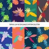 Nahtlose tropische Blatt-Blumenvektor-Muster-Hintergrund-Tapeten-Design Lizenzfreie Stockbilder
