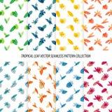 Nahtlose tropische Blatt-Blumenvektor-Muster-Hintergrund-Tapeten-Design Lizenzfreie Stockfotografie