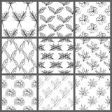 Nahtlose tropische Schwarzweiss-Blatt-Blumenvektor-Muster-Hintergrund-Tapeten-Design Stockfotos