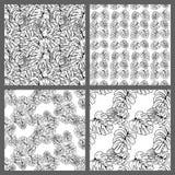 Nahtlose tropische Schwarzweiss-Blatt-Blumenvektor-Muster-Hintergrund-Tapeten-Design Lizenzfreie Stockfotos