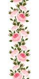 Nahtlose vertikale Grenze mit rosa Rosen. Vektorillustration. Lizenzfreie Stockfotos