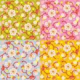 Nahtlose Wiederholungsmit blumenmuster der Frühlingsblüte Lizenzfreies Stockbild