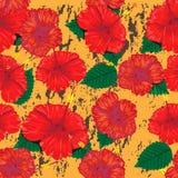 Nahtloser blühender Blumenmusterhintergrund Lizenzfreie Stockfotos