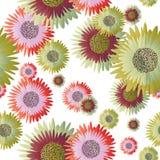 Nahtloser Blumenhintergrund Lizenzfreies Stockfoto