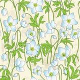 Nahtloser Blumenhintergrund mit Anemonen Lizenzfreies Stockfoto