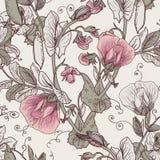 Nahtloser Blumenhintergrund mit blühenden Erbsen Lizenzfreie Stockbilder