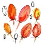 Nahtloser Blumenhintergrund mit Hand gezeichneten Blumen Stockfotos