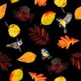 Nahtloser Blumenmusterherbstlaub und -vögel Lizenzfreies Stockbild
