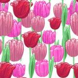 Nahtloser Blumenmusterhintergrund mit roter und rosa netter Tulpe Lizenzfreie Stockbilder