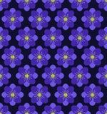 Nahtloser Blumenmusterhintergrund, purpurroter Hintergrund Stockbild